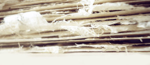Going Paperless: The Why & How